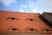Sibiu, Romania. Traditional roof