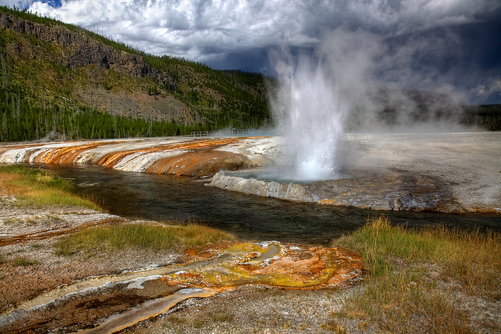Cliff Geyser erupts along Iron Spring Creek in the Black Sand Basin of Yellowstone National Park.