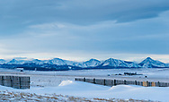 Windswept winter landscape of Southern Alberta, Canada, viewed from the Crowsnest Highway