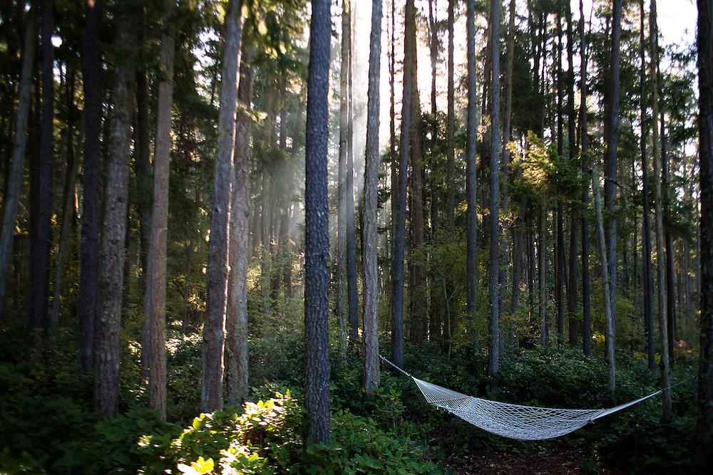 Hammock in Paradise, Lopez Island, Washington