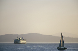 North America, USA, Washington, Seattle, Elliott Bay. Sailboat and ferry on Elliott Bay