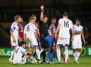 Crystal Palace's Mile Jedinak gets sent off<br /> <br /> - Barclays Premier League - Crystal Palace vs Sunderland- Selhurst Park - London - England - 3rd November 2014  - Picture David Klein/Sportimage