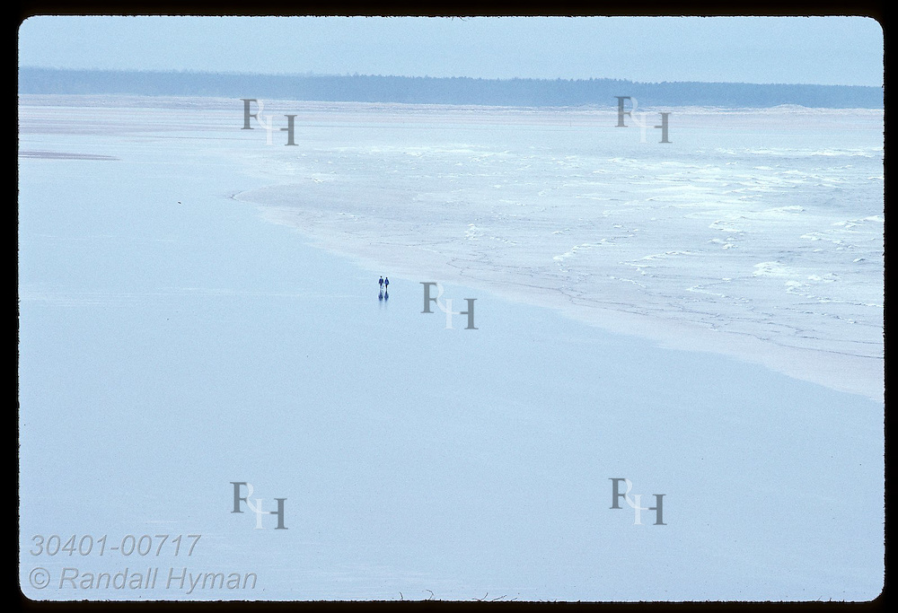 Couple walking along beach is dwarfed by vast sands that stretch away from town of St. Andrews. Scotland