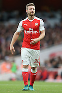 Shkodran Mustafi of Arsenal looking on. Premier league match, Arsenal v Middlesbrough at the Emirates Stadium in London on Saturday 22nd October 2016.<br /> pic by John Patrick Fletcher, Andrew Orchard sports photography.