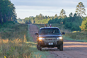 Hunters and their hounds search for black bears in northern Wisconsin