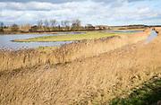 Wetland lowland marshes landscape, Hollesley Bay, Suffolk, England, UK