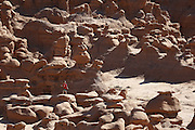 SHOT 10/19/16 2:13:47 PM - Emery County Utah tourism photos including hiking and exploring Goblin Valley including an arch rappel, the Black Dragon Canyon and  mountain biking Saucer Basin with Lamar Guymon. (Photo by Marc Piscotty / © 2016)