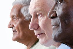 Multiracial group of older men in profile,