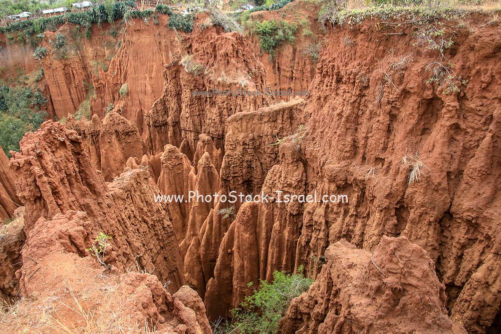 Sandstone rock formations at Gesergiyo, near Konso, Ethiopia, Africa