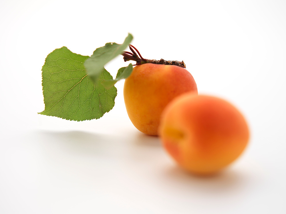 fresh apricots with stalk and leaf on a white background