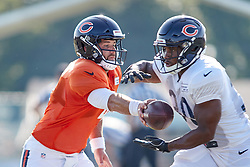 July 28, 2018 - Bourbonnais, IL, U.S. - BOURBONNAIS, IL - JULY 28: Chicago Bears quarterback Chase Daniel (4) and Chicago Bears running back Benny Cunningham (30) participate in drills during the Chicago Bears training camp on July 28, 2018 at Olivet Nazarene University in Bourbonnais, Illinois. (Photo by Robin Alam/Icon Sportswire) (Credit Image: © Robin Alam/Icon SMI via ZUMA Press)