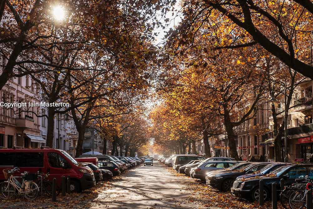Autumn colours on Kollwitzstrasse in Prenzlauer Berg, Berlin Germany