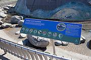 Aquarium Of The Pacific In Long Beach California