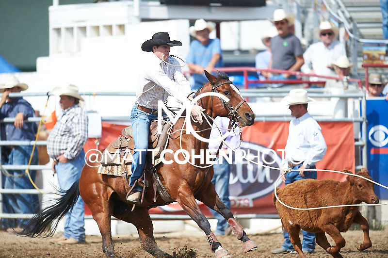 Tie-down roper Murray Pole of Erskine, AB competes at the Redding Rodeo in Redding, CA<br /> <br /> <br /> UNEDITED LOW-RES PREVIEW<br /> <br /> <br /> File shown may be an unedited low resolution version used as a proof only. All prints are 100% guaranteed for quality. Sizes 8x10+ come with a version for personal social media. I am currently not selling downloads for commercial/brand use.
