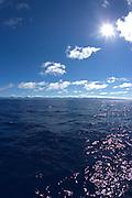 Ocean off Windward Oahu, Hawaii<br />