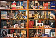 Polar book collection - Antarctica on left, Arctic on right plus asscociated memorabilia, sextant, reinder antler etc