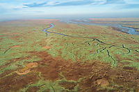 Aerial view of wide wetland ecosystem near the ocean, Netherlands.