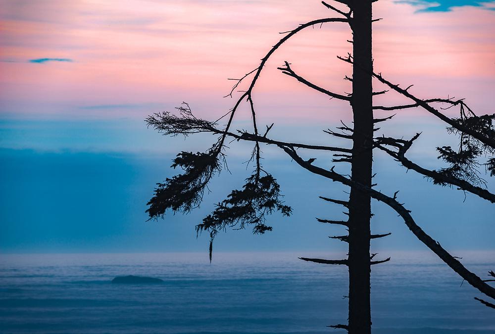 Ruby Beach, evening light, August, Pacific Ocean coastline, Olympic National Park, Washington, USA