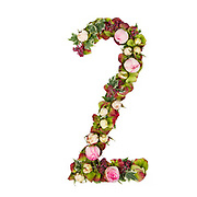 The number Two Part of a set of letters, Numbers and symbols of the Alphabet made with flowers, branches and leaves on white background