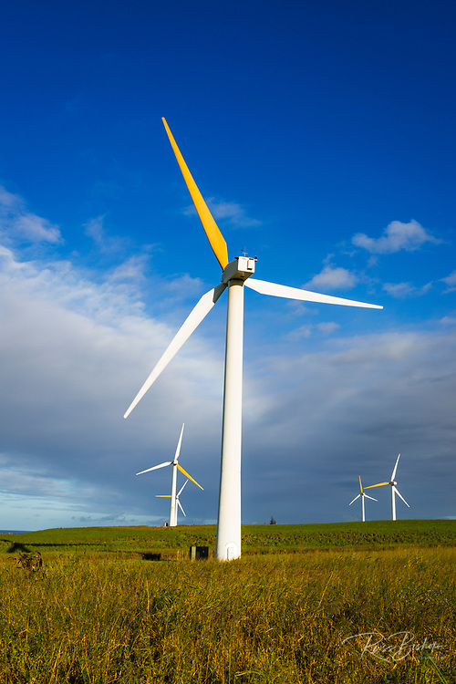 Wind turbines at the Hawi Wind Farm, Upolu Point, Hawi, The Big Island, Hawaii USA