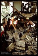 11: AMAZON RUBBER SHIPMENT