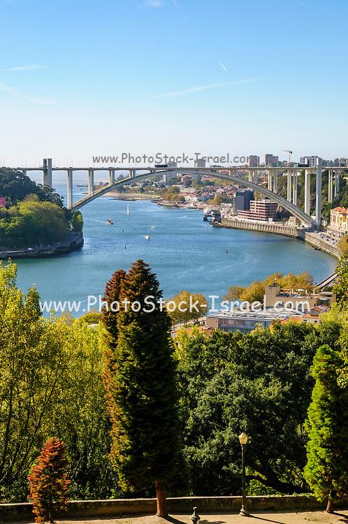 Douro River and Ponte da Arrábida (Arrabida Bridge) as seen from Jardins do Palacio de Cristal (Crystal Palace Gardens), Porto, Portugal