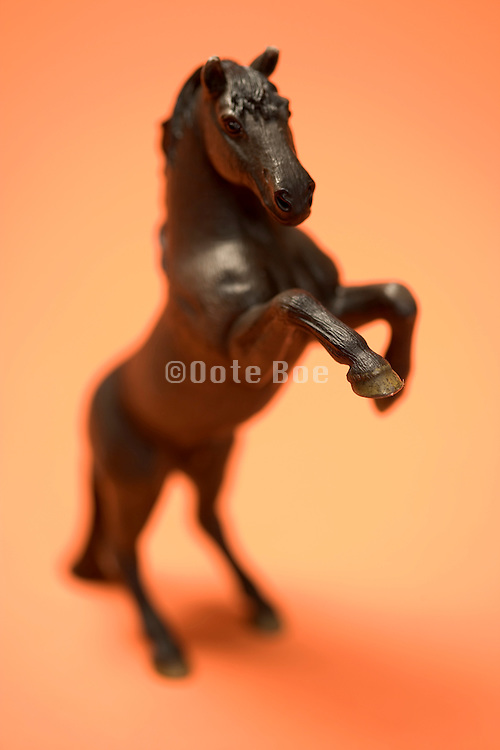 toy horse on its hind legs