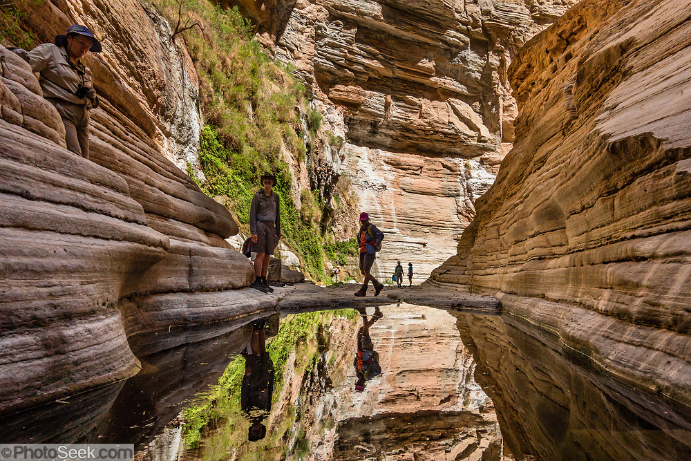 Hikers reflect in a plunge pool in Fern Glen slot canyon at Colorado River Mile 168.6. Day 12 of 16 days rafting 226 miles down the Colorado River in Grand Canyon National Park, Arizona, USA.