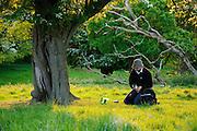 Amongst the veteran trees of Donington Park, an ecological surveyor prepares a Bat detector