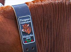 29.04.2018, Maishofen, AUT, XII Weltkongress Pinzgauer Rind, im Bild Feature // Feature during the XII Pinzgauer cattle World Congress in Maishofen, Austria on 2018/04/29. EXPA Pictures © 2018, PhotoCredit: EXPA/ Stefanie Oberhauser