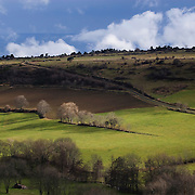 Upcoming clouds in green grass-land scenery with trees. Frankrijk, Auvergne