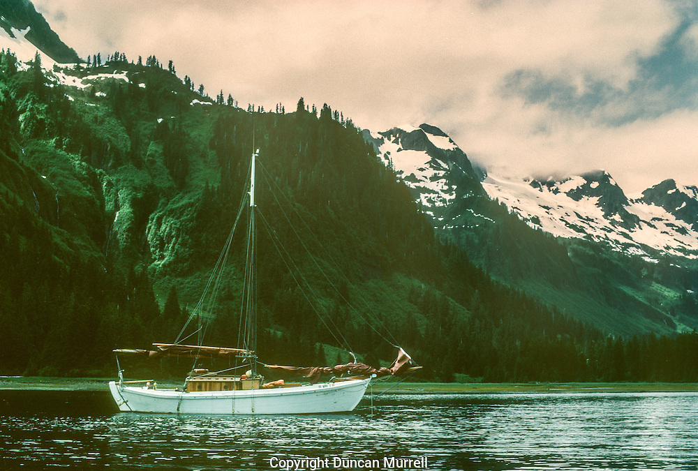 Pybus Bay was one of my favourite beautiful places in Southeast Alaska.<br /> Admiralty Island is an island in the Alexander Archipelago in Southeast Alaska. It is 145 km (90 mi) long and 56 km (35 mi) wide with an area of 4,264.1 km² (1,646.4 sq mi), making it the seventh largest island in the United States. It is one of the ABC islands of Alaska: Admiralty, Baranof and Chichagof. The island is nearly cut in two by Seymour Canal; to its east is the long, narrow Glass Peninsula. Most of Admiralty Island — more than 955,000 acres (3,860 km²) is occupied by the Admiralty Island National Monument - a federally protected wilderness area administered by the Tongass National Forest. The Kootznoowoo Wilderness encompasses vast stands of old growth temperate rainforest. These forests provide some of the best habitat available to species such as brown bears, bald eagles, and Sitka black-tailed deer.