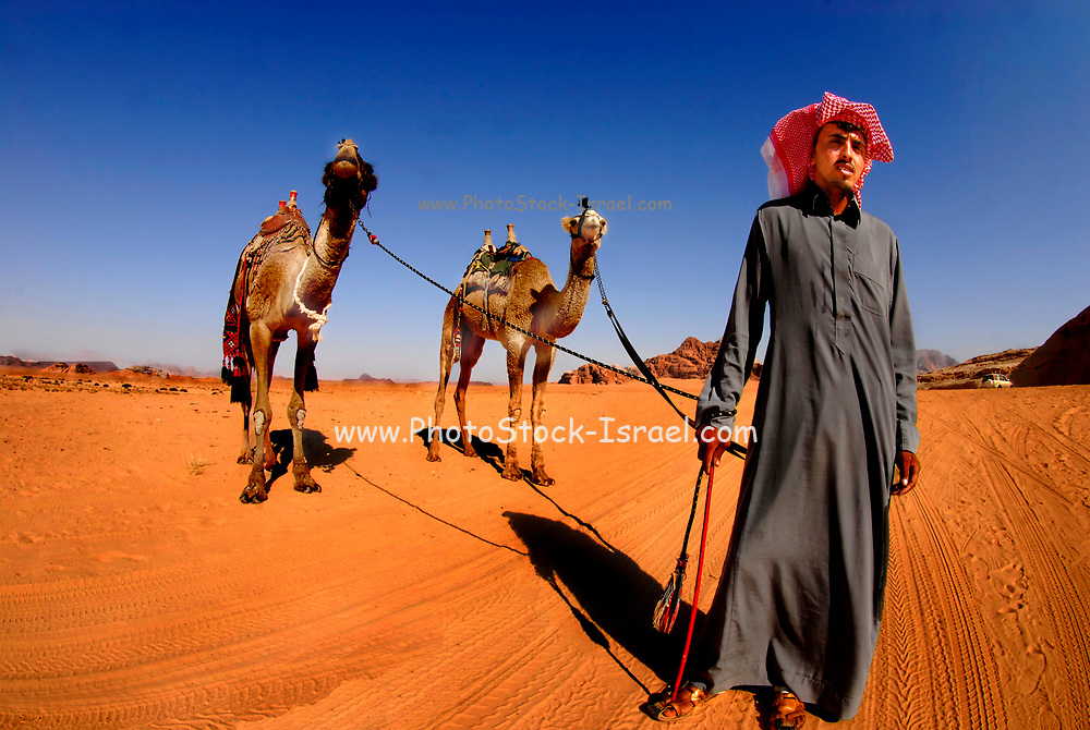 A Bedouin with his two camels. Photographed at Wadi Rum,  Jordan