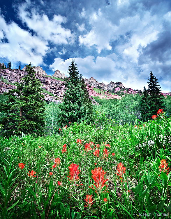 Mount Willoughby's jagged ridgeline beckons travelers with the promise of a more complete view further up the trail.