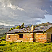 In the village of Taachasis in Nandi County, tea growing and dairy farming (pictured) are the income generation methods of choice. Rift Valley Province, Kenya.