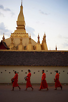 Laos, ville de Vientiane, stupa Pha That Luang procession matinale des moines bouddhiste pour l'aumone // Laos, Vientiane city, Pha That Luang stupa, Buddhist monks procession receive offerings