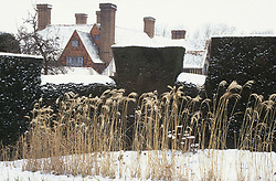 Looking towards the house at Great Dixter with Miscanthus 'Silberfeder' syn. Miscanthus sinensis 'Silver Feather' in the foreground