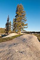Tuolumne meadows, Yosemite national park, California, USA