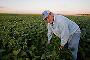 Illinois farmer Gordon Stine tends to his soy bean field at his farm in St.Elmo, Illinois.   (Gordon Stine is featured in the book What I Eat; Around the World in 80 Diets.) MODEL RELEASED.