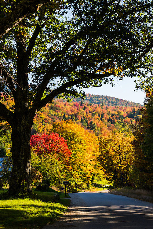 Tranquility and foliage in Fall glory on a Vermont back road.