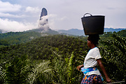 A woman carrying a basket passes by the Landscape near Cão Grande (big Dog) mountain. This area was cleared from native forest to plant palm trees for production.