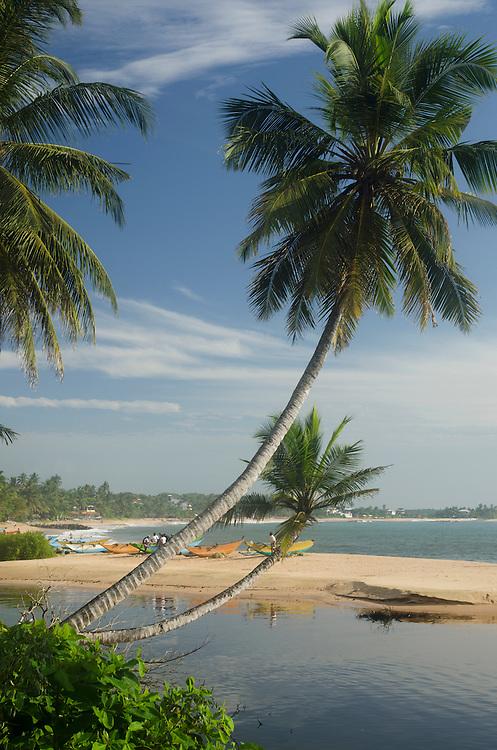 Palm-fringed beach in Tangalle, Sri Lanka
