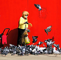lady with mask on feeding the birds in Southampton photo by Michael Palmer