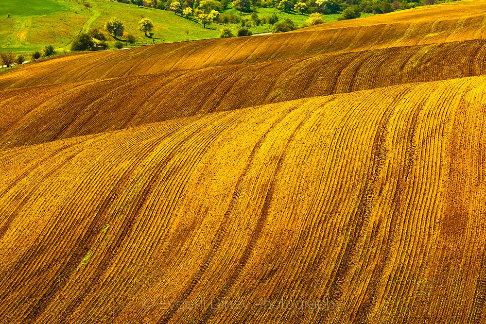 Curved fields in Dobrudzha region