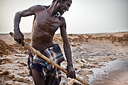 The salt of the earth. An illegal Ethiopian immigrant gathers salt to sell at the market. Almost half the city lives in the slum - 200,000 people.   Right across from the very modern New Port of Djibouti, malnourished Oromo people (of Ethiopia), some of them illigal immigrants, are collecting salt. They dig holes, the sea water sips through and evaporates.  They then collect the salt. All work is done by hand. They live in extreme conditions, in houses made of collected garbage...The geostrategical and geopolitical importance of the Republic of Djibouti, located on the Horn of Africa, by the Red Sea and the Gulf of Aden, and bordered by Eritrea, Ethiopia and Somalia.