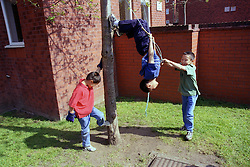 Group of young boys playing on rope swing in back garden,