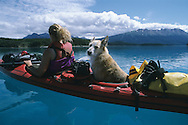A woman paddles with her dog on Atlin Lake, B.C., which is a popular tourist destination for Yukoners.