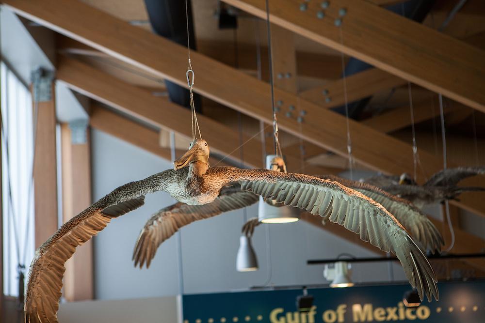 Apalachicola National<br /> Estuarine Research Reserve<br /> DEP Florida Coastal Office