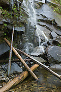 A waterfall spatters and drips over rocks and logs on the Lake Serene Trail, Mount Baker-Snoqualmie National Forest, Washington, USA