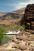 Rafts pull over and beach along the Colorado River, Grand Canyon National Park, Arizona, US; Tricia Cronin (SF, CA) and others (MR on file) present in photo
